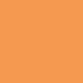551 PE Оранжевый светлый